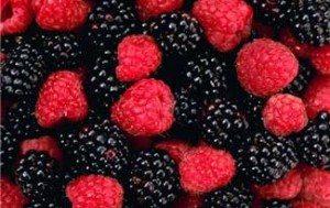 Mange bær er rike antioksidantkilder