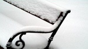 Ikke glem hagen din, selv om du ikke ser det som er under snøen...