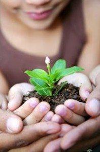 Vi vil jo gjerne at plantene våre skal ha det optimalt