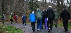 Gruppe fra hjerterehabilitering på Krokeide foreviget i Hordnesskogen. (Foto: johnsteffensen.no)