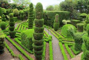 Funchal har flere parker og botaniske hager. Et eldorado for hageentusiaster. Foto: johnsteffensen.no