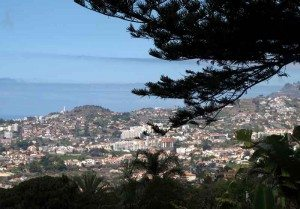Funchal sett fra den botaniske hagen Jardim Botanico. Foto: johnsteffensen.no
