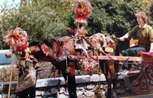 De berømte hestevognene, Carretto siciliano, kan godt dukke opp på tur til Sicilia. (Foto: Britt Hilt Caspersen)