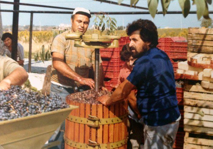 Tur til Sicilia. Vinproduksjon på gamlemåten. (Foto: Britt Hilt Caspersen)