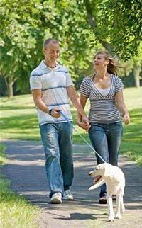 En gåtur er like gunstig for hjertet som en løpetur...
