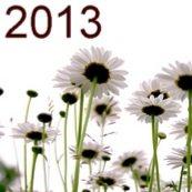 Hva kan du om året 2013?