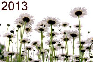 Hva kan du om kalenderåret 2013?