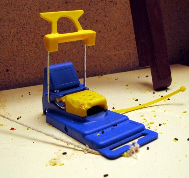 Mjølner musefelle er god, i hvert fall på smak, synes musene. www.johnsteffensen.no