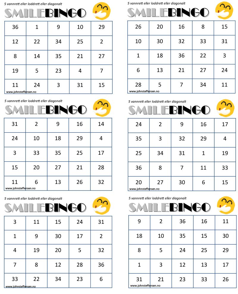 Bingoskjema 2 - www.johnsteffensen.no.pub
