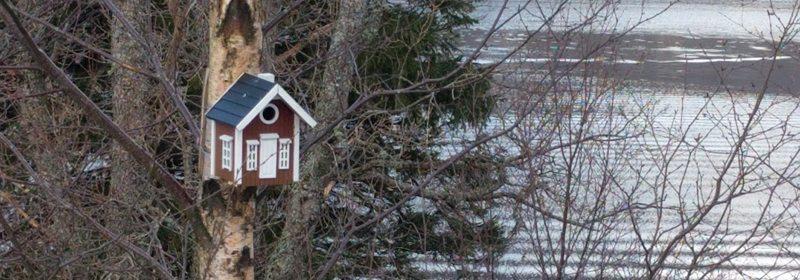 Happy Home er en koselig fuglekasse, men kvaliteten er så som så... Foto - johnsteffensen.no