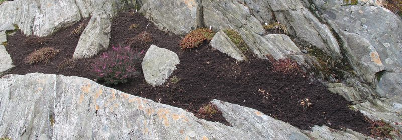 Etter en liten time er steinbedet ferdig luket og plantene beskåret. Nå er det bare å holde bedet ved like, det går nesten av seg selv... johnsteffensen.no