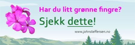 Sjekk Johns hagesider. www.johnsteffensen.no